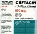 Ceftacin IM/IV Inj 500mg 1Vial